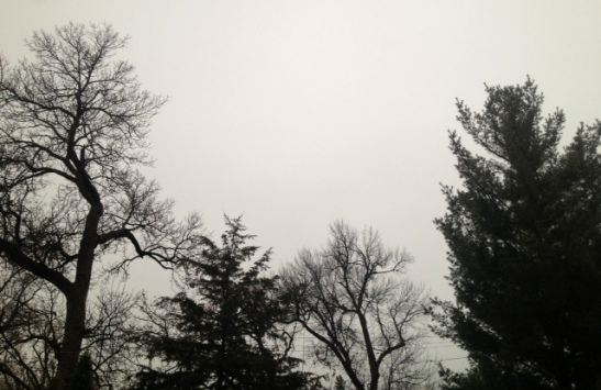 A rainy gray afternoon in November. Minneapolis, Minnesota.