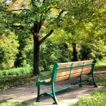 The Bench. Minnehaha Parkway